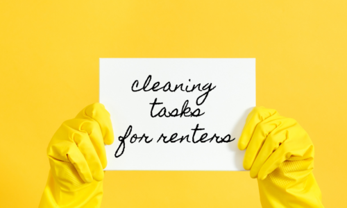 cleaning tasks for renters