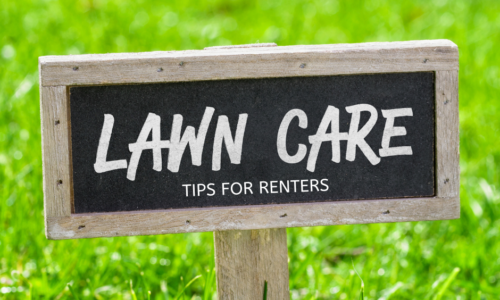 TIPS FOR LAWN CARE FOR RENTERS